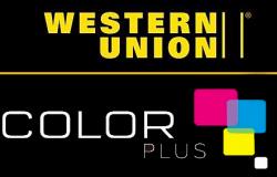 Franquicias Color Plus, la clave del éxito